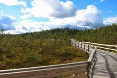 Wanderung im #Seiteminen #Nationalpark #Tampereallbright - http://www.nordicmarketing.de/aktivitaeten-von-finnevent/