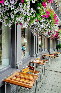 #Hanging #gardens in #Windsor, #England #Europe    #UK for #kids