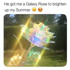 Show your special someone you love them to the ends of the galaxy with this vibrant, Galaxy Rose! It arrives beautifully packaged and ready to go! Each lovely rose is delicately handmade of iridescent rose petals and leaves designed to last forever. Satisfying Video, Oddly Satisfying, Lore Olympus, Hybrid Tea Roses, Leaf Design, Rose Petals, Boyfriend Gifts, Fun Facts, Cool Things To Buy