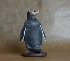 Yellow-eyed Penguin or Hoiho - made by Harriet Knibbs Sculptures