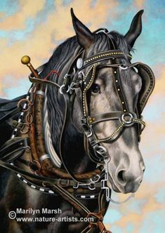 Acrylic Painting of a draft horse with his harness by Marilyn Marsh