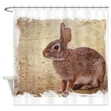 Florida Cottontail Bunny Shower Curtain