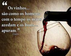 Os vinhos são como os homens...