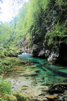 aqua colors of the Sava river in Vintgar Gorge near Bled, Slovenia