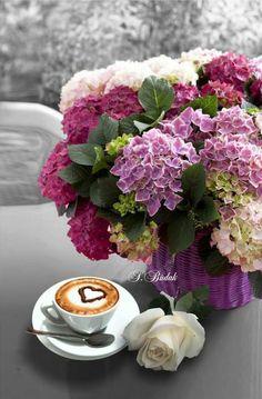 Flowers and coffee Coffee Vs Tea, I Love Coffee, Coffee Cafe, Good Morning Coffee Gif, Coffee Break, Coffee Flower, Flower Tea, Coffee Ingredients, Pause Café