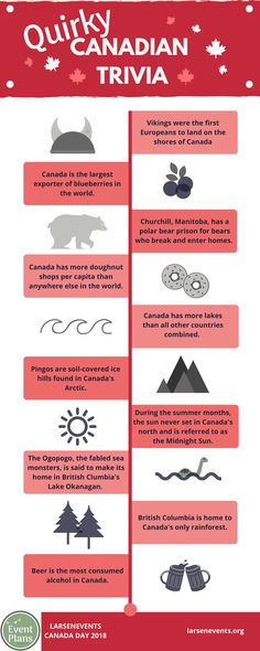 Did you know Canada has a polar bear prison? Yep, check out some quirky Canadian trivia in this infographic, and quiz your guests this Canada Day. Canadian Facts, Canadian Culture, Canadian Things, I Am Canadian, Canadian History, Canada For Kids, All About Canada, Canada Eh, Visit Canada