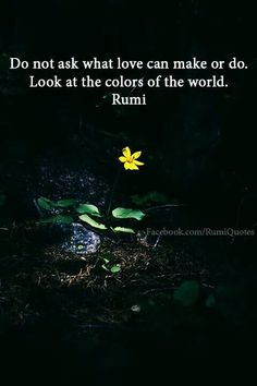 Explore inspirational, thought-provoking and powerful Rumi quotes. Here are the 100 greatest Rumi quotations on life, love, wisdom and transformation. Rumi Quotes Life, Rumi Love Quotes, Poetry Quotes, Change Quotes, Inspiring Quotes, Kahlil Gibran, Carl Jung, Rumi Poem, Jalaluddin Rumi