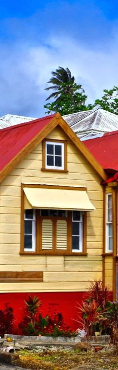 #chattelhouses #windows #caribbean #barbados #colours #islands #westindian #westindies