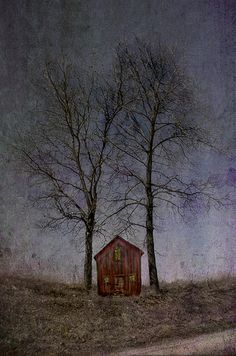 Night Draws Near by jamie heiden, via Flickr