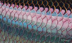 Tarpon Flank Scales Fish scales Art $180