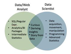 Analytics Staffing for Big Data: A Perspective