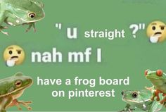Sapo Frog, Fb Memes, Funny Memes, Frog Pictures, Frog Art, Cute Frogs, Frog And Toad, Cry For Help, Mood Pics