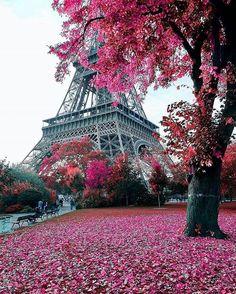 Eiffel Tower Paris in Autumn [Fall] Paris Photography, Photography Photos, Landscape Photography, Torre Eiffel Paris, Paris Eiffel Tower, Vacation Captions, Rio Sena, Paris In Autumn, Autumn Fall