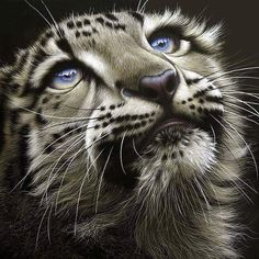 Those eyes.... Լღvє♡