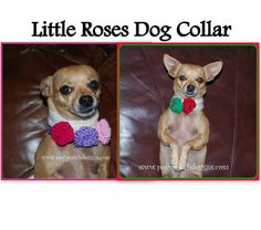 Posh Pooch Designs: Little Roses Dog Collar, free knitting pattern