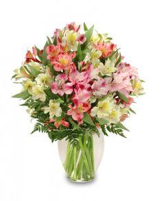 Alluring Alstroemeria Arrangement In Tuscaloosa Al Bellabloomsflorist Flower