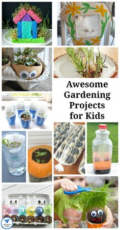 Awesome gardening projects for kids - mom preschool at home расте Earth Day Activities, Science Activities, Toddler Activities, Outdoor Activities, Spring Activities, Toddler Art Projects, Projects For Kids, Diy Gardening, Organic Gardening