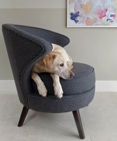 Unusual & Quirky chairs from The Olive Tree: Berry £489