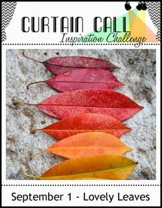This is just a reminder that the Lovely Leaves challenge at Curtain Call Inspiration Challenge is open for three more days.       I m...