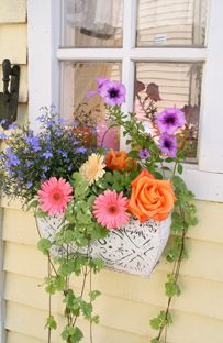 Sweet little flower box