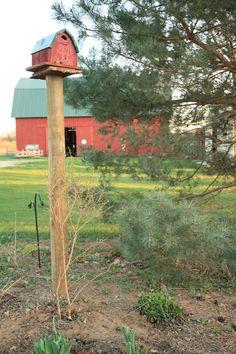 a bird house like the barn so cute
