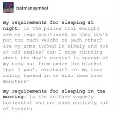 Requirements for sleeping. For some reason, it's so much easier to sleep at work than at home. Must be all those non-hornet-covered surfaces.