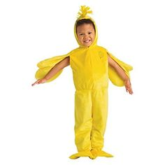Peanuts Woodstock Toddler Deluxe Costume Size: 2-3T
