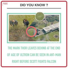 """5,699 Likes, 52 Comments - • Accurate.MCU • mcu fanpage (@accurate.mcu) on Instagram: """"• DID YOU KNOW ??? • Found this out via my friend @theo_marveladdicts check him out. Did you know…"""""""