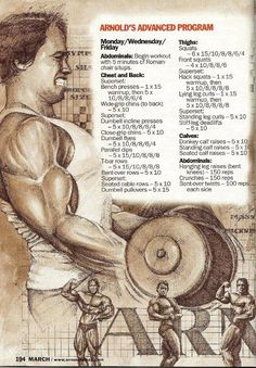 Arnold Schwarzenegger Olympia Training Secrets of the Oak Being Fit and staying healthy