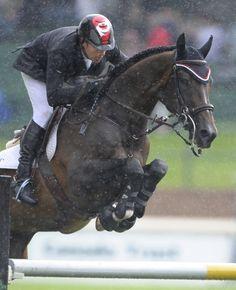 Hickstead and Eric Lamaze at Spruce Meadows / dark bay jumper rain