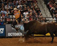 Frank Newsom Gettin The Job Done At PBR OKC2014 Bullfighters Respect