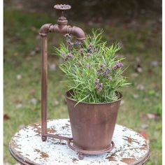 Water Spigot Tabletop Planter -   Looking for a conversation piece for your patio? Our Water Spigot Tabletop Planter is guaranteed to grab the attention of your guests. Made from plumbing parts, it is the cutest planter you've seen. Includes a metal pot.
