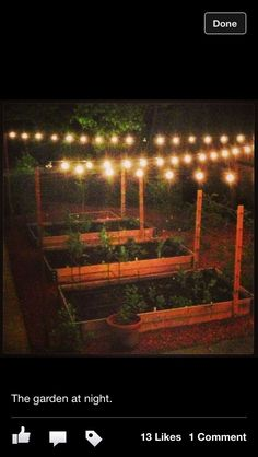 What a great idea to be able to enjoy the vegetable or herb garden at night!