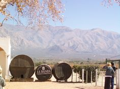 Northern Argentina- Salta- Wine cellars