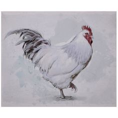 White Rooster On Stretched Canvas