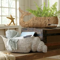 Conch Magazine Basket   This seaside-inspired basket offers a creative approach to storage throughout the home.