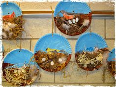 River Bliss: Back Yard Birds - Bird study in the early childhood classroom and a beautiful nest project