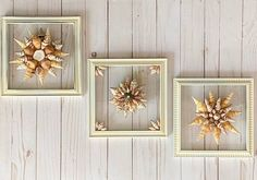 """SET OF 3 8""""x 8"""" Beach Glass Wall and/or Window Art/Seashell Art/Resin Art/Unique Coastal Decor/Sun Catcher/Beach Decor/Great Christmas Gift  Handmade in South Carolina with high quality materials (seashells and sea biscuit) and secured with care. The design is bonded (not glued) to glass with resin Nautical Wall Art, Coastal Wall Art, Coastal Decor, Beach Cottage Style, Cottage Style Homes, Beach House Decor, Seashell Art, Great Housewarming Gifts, Sea Glass Art"""