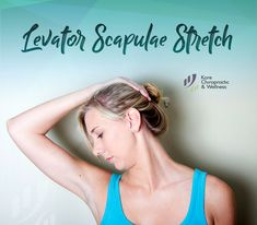 Levator Scapulae 💪 In a sitting position, slowly and with ease, gently pulling your head and directing your nose to your underarm region. Hold for seconds. 🔄 Repeat on other side. Perform throughout the day. Cervical Spondylosis, Scapula, Sitting Positions, Chiropractic Wellness, Daily Activities, 30 Seconds, Stretching, Underarm, Repeat