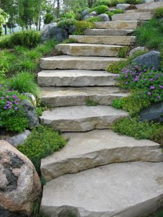Beautiful stone steps would be nice for that steep hill on the side of the house