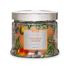 G73905 - Pot à bougie 3 mèches Feuillage doré. Un pot pourri de feuilles d'automne mêlé de bâtons de cannelle crée une atmosphère boisée et épicée qui évoque la saison des vendanges.