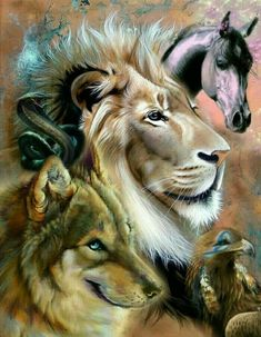 3f4c433ba 122 Best ANIMAL GUIDES images in 2019 | Animal spirit guides, Magick ...