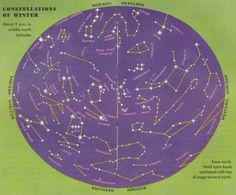 constellations northern hemisphere august - Google Search
