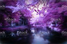 デジタルアート、ミステリーパープルの林、池、夢のような、魅力あふれる ストックフォト・写真素材 64308247 - iStock