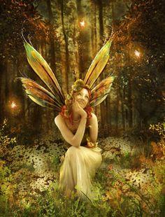 Fairies, nymphs, woodland creatures, mystical, light, elemental.