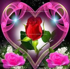 Good Morning Wednesday, Good Morning Roses, Good Morning Picture, Good Morning Greetings, Morning Pictures, Evening Greetings, Morning Pics, Night Pictures, Happy Saturday