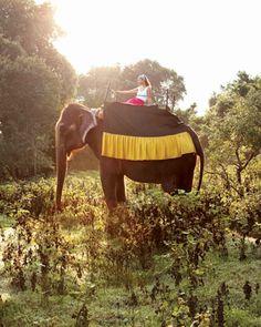 affordable-honeymoons-sri-lanka.jpg