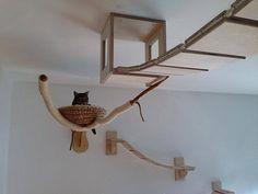 German cat furniture
