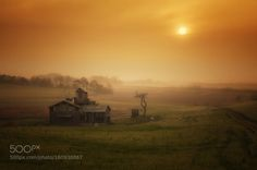 Anseong Farmland by c1113  mist sunrise fog morning travel sun light architecture tree asia south korea korea 대한민국 한국 gyeonggi-