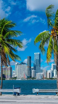 Us Travel, Travel Guide, Flight And Hotel, Top Destinations, Plan Your Trip, Nice View, Miami, Holidays, Usa